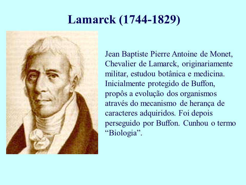 Lamarck (1744-1829) Jean Baptiste Pierre Antoine de Monet, Chevalier de Lamarck, originariamente militar, estudou botânica e medicina. Inicialmente pr