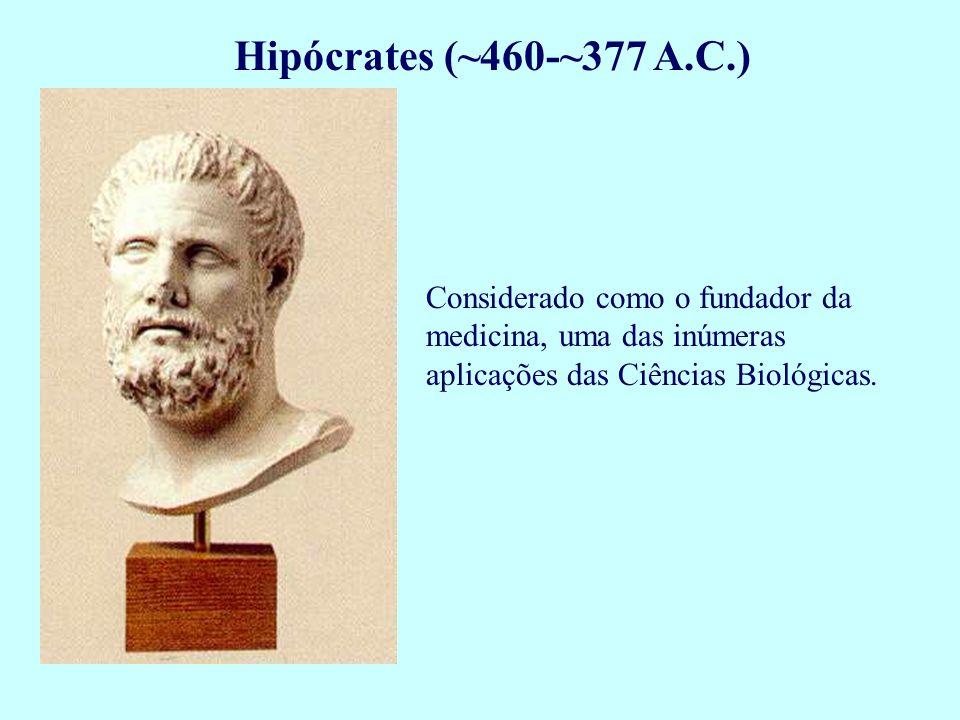 Platão 427-343 A.C.) Filósofo grego dos mais influentes.