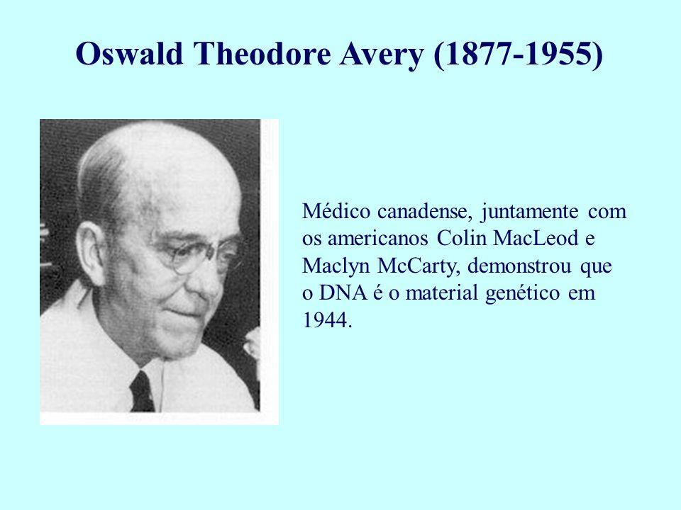 Oswald Theodore Avery (1877-1955) Médico canadense, juntamente com os americanos Colin MacLeod e Maclyn McCarty, demonstrou que o DNA é o material gen