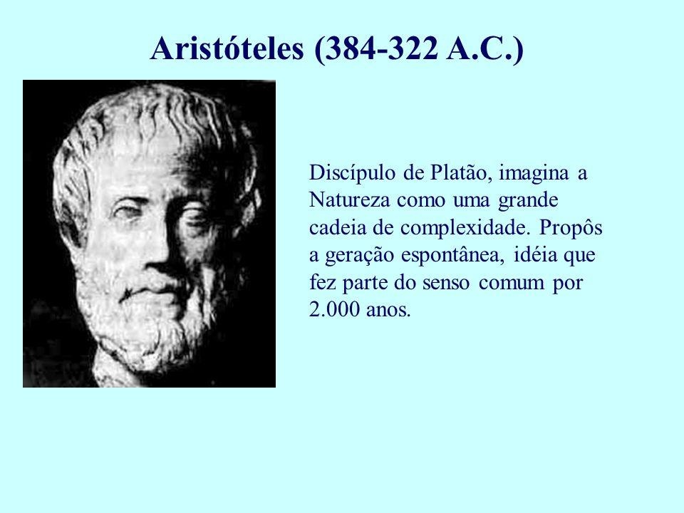 Aristóteles (384-322 A.C.) Discípulo de Platão, imagina a Natureza como uma grande cadeia de complexidade. Propôs a geração espontânea, idéia que fez