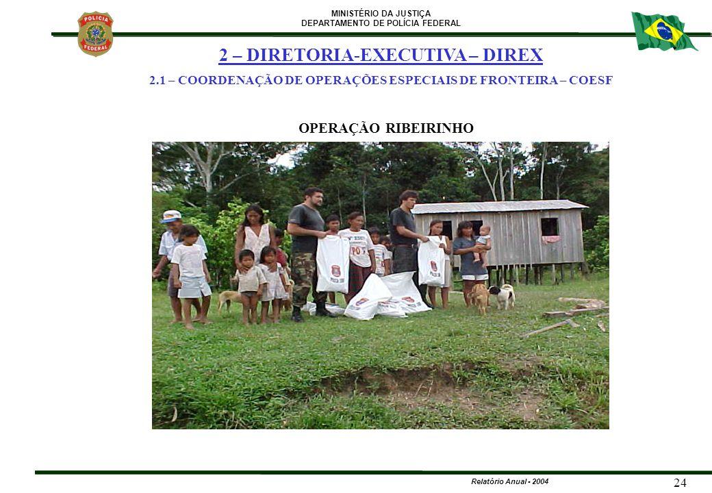 MINISTÉRIO DA JUSTIÇA DEPARTAMENTO DE POLÍCIA FEDERAL Relatório Anual - 2004 24 2 – DIRETORIA-EXECUTIVA – DIREX 2.1 – COORDENAÇÃO DE OPERAÇÕES ESPECIA