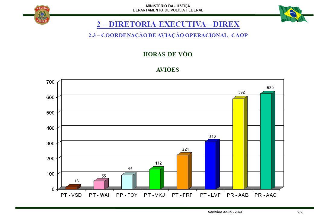 MINISTÉRIO DA JUSTIÇA DEPARTAMENTO DE POLÍCIA FEDERAL Relatório Anual - 2004 33 HORAS DE VÔO AVIÕES 2 – DIRETORIA-EXECUTIVA – DIREX 2.3 – COORDENAÇÃO