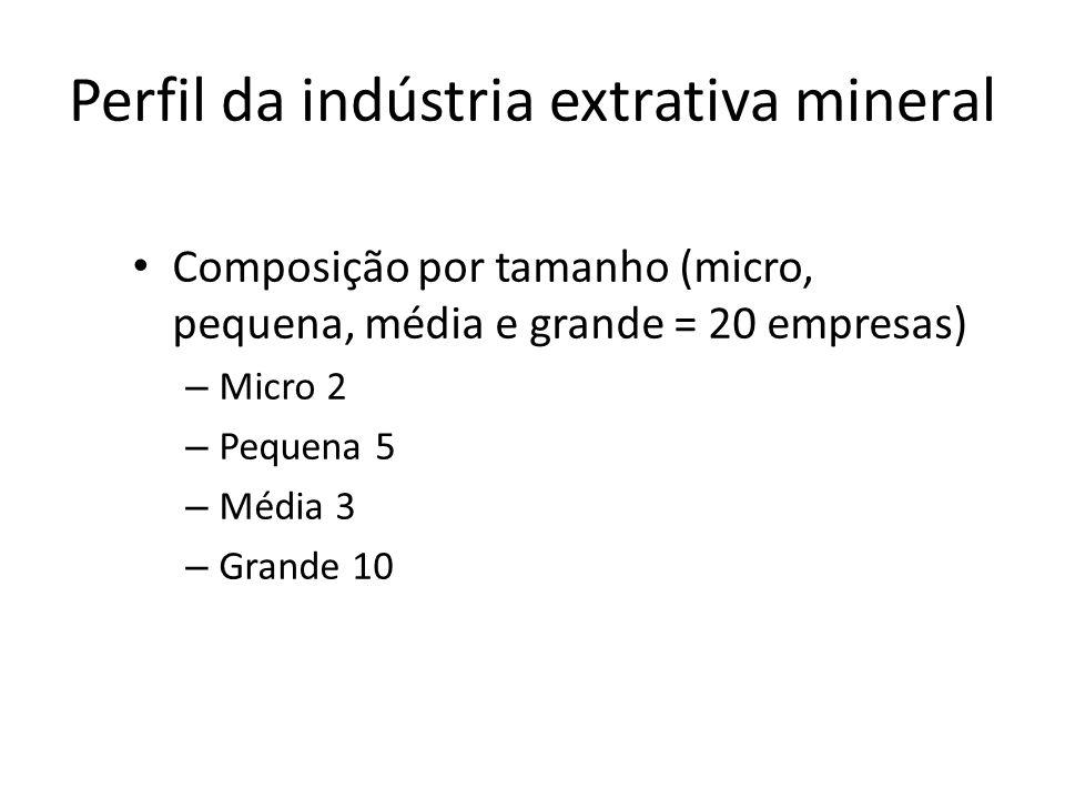 Perfil da indústria extrativa mineral Composição por tamanho (micro, pequena, média e grande = 20 empresas) – Micro 2 – Pequena 5 – Média 3 – Grande 1
