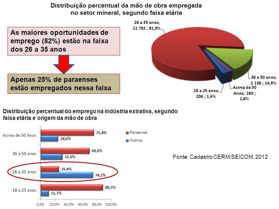 Distribuição percentual da mão de obra empregada no setor mineral, segundo faixa etária Distribuição percentual do emprego na indústria extrativa, seg