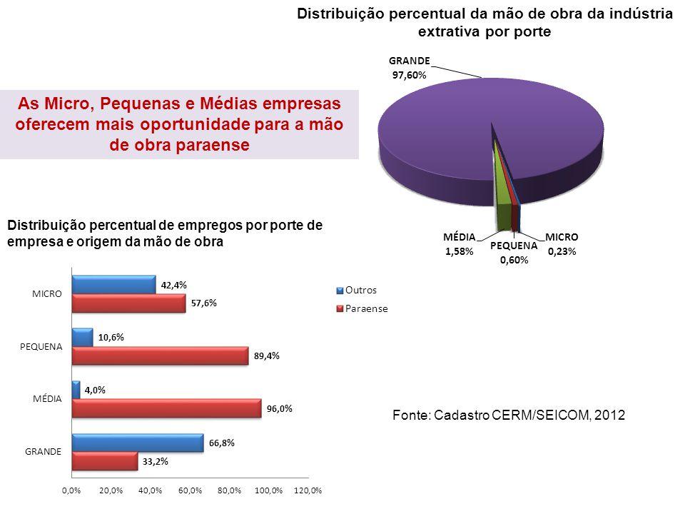 Distribuição percentual da mão de obra da indústria extrativa por porte Distribuição percentual de empregos por porte de empresa e origem da mão de ob