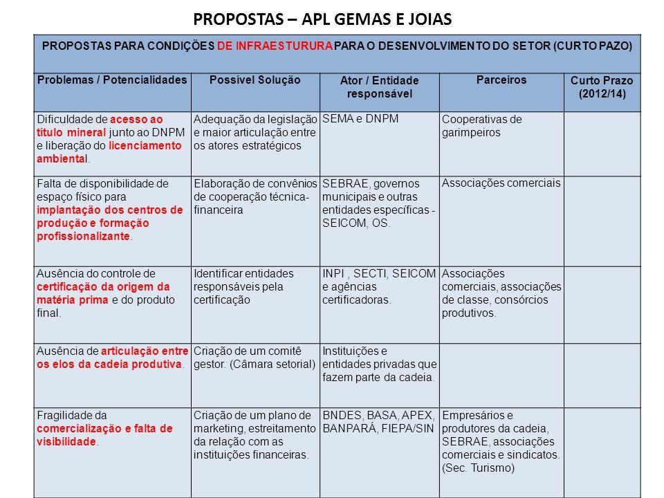 PROPOSTAS PARA CONDIÇÕES DE INFRAESTURURA PARA O DESENVOLVIMENTO DO SETOR (CURTO PAZO) Problemas / PotencialidadesPossível SoluçãoAtor / Entidade resp