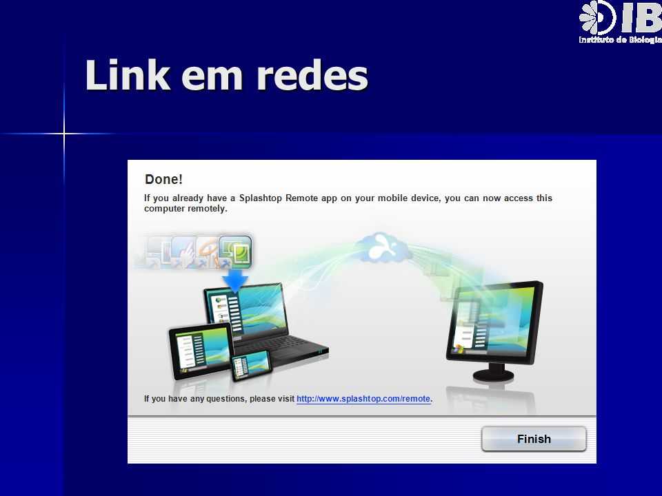 Link em redes