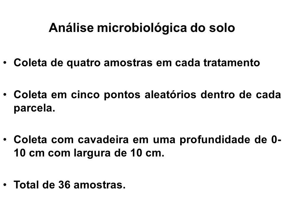 Análise microbiológica do solo Coleta de quatro amostras em cada tratamento Coleta em cinco pontos aleatórios dentro de cada parcela. Coleta com cavad