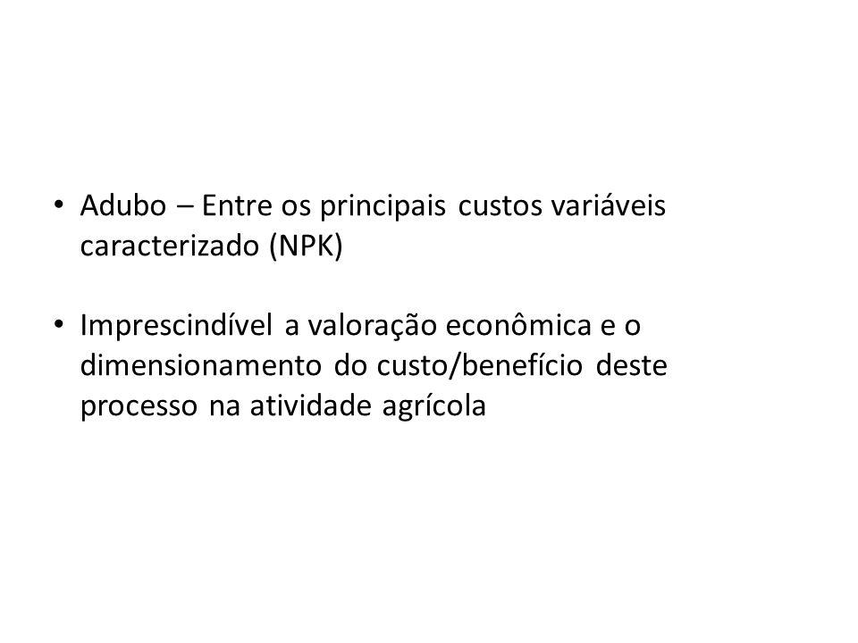 Adubo – Entre os principais custos variáveis caracterizado (NPK) Imprescindível a valoração econômica e o dimensionamento do custo/benefício deste pro