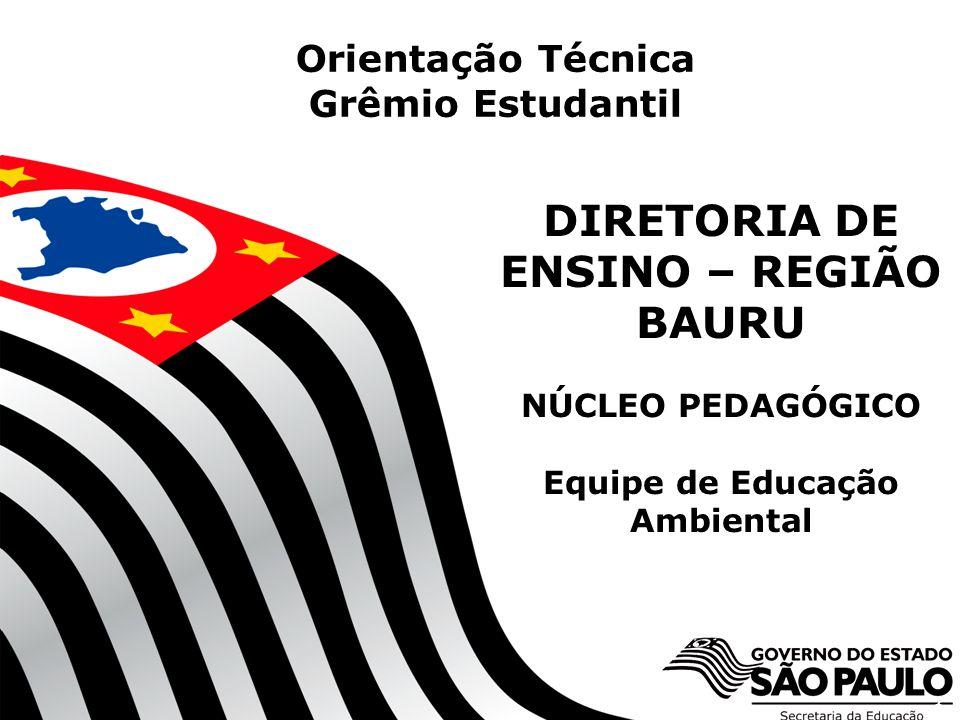 1 DIRETORIA DE ENSINO – REGIÃO BAURU NÚCLEO PEDAGÓGICO Equipe de Educação Ambiental Orientação Técnica Grêmio Estudantil