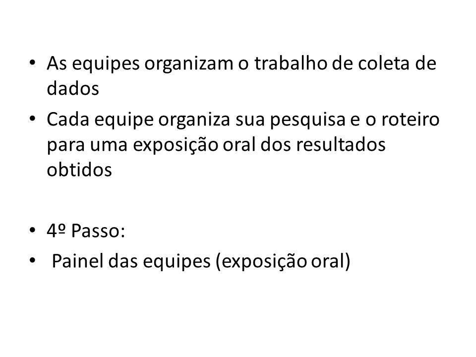 As equipes organizam o trabalho de coleta de dados Cada equipe organiza sua pesquisa e o roteiro para uma exposição oral dos resultados obtidos 4º Passo: Painel das equipes (exposição oral)
