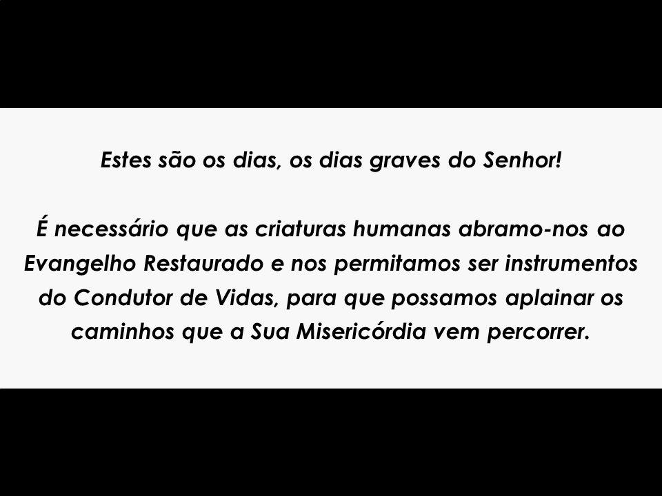 Os Dias Graves do Senhor Bezerra de Menezes Clique para avançar...
