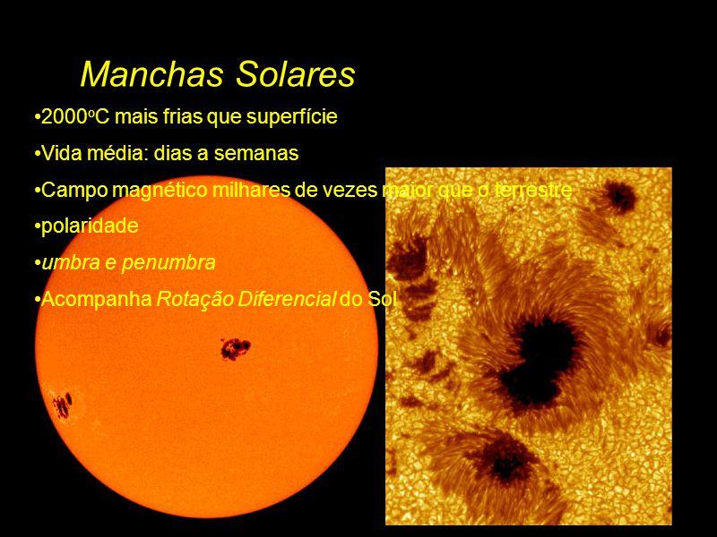 Manchas Solares 2000 o C mais frias que superfície Vida média: dias a semanas Campo magnético milhares de vezes maior que o terrestre polaridade umbra e penumbra Acompanha Rotação Diferencial do Sol