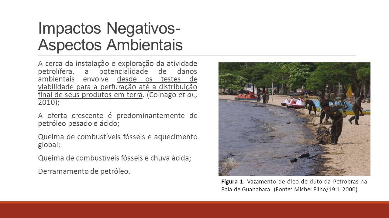 Impactos Negativos- Aspectos Ambientais A cerca da instalação e exploração da atividade petrolífera, a potencialidade de danos ambientais envolve desd