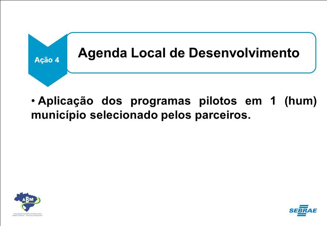 Agenda Local de Desenvolvimento Ação 4 Aplicação dos programas pilotos em 1 (hum) município selecionado pelos parceiros. Ações Previstas