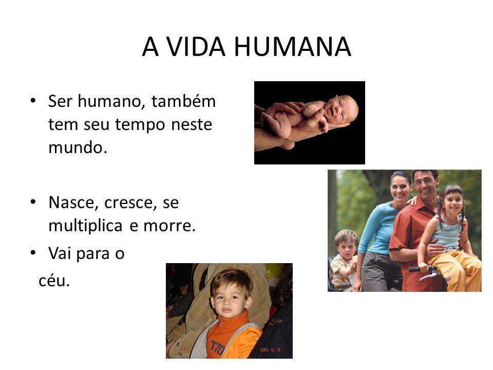 A VIDA HUMANA Ser humano, também tem seu tempo neste mundo. Nasce, cresce, se multiplica e morre. Vai para o céu.