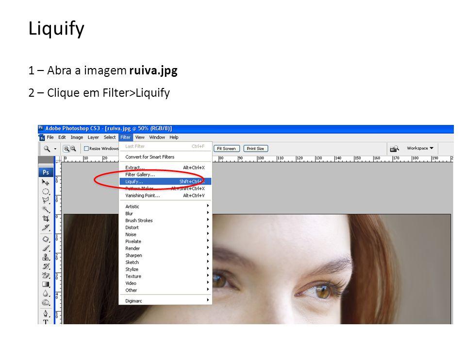 1 – Abra a imagem ruiva.jpg 2 – Clique em Filter>Liquify