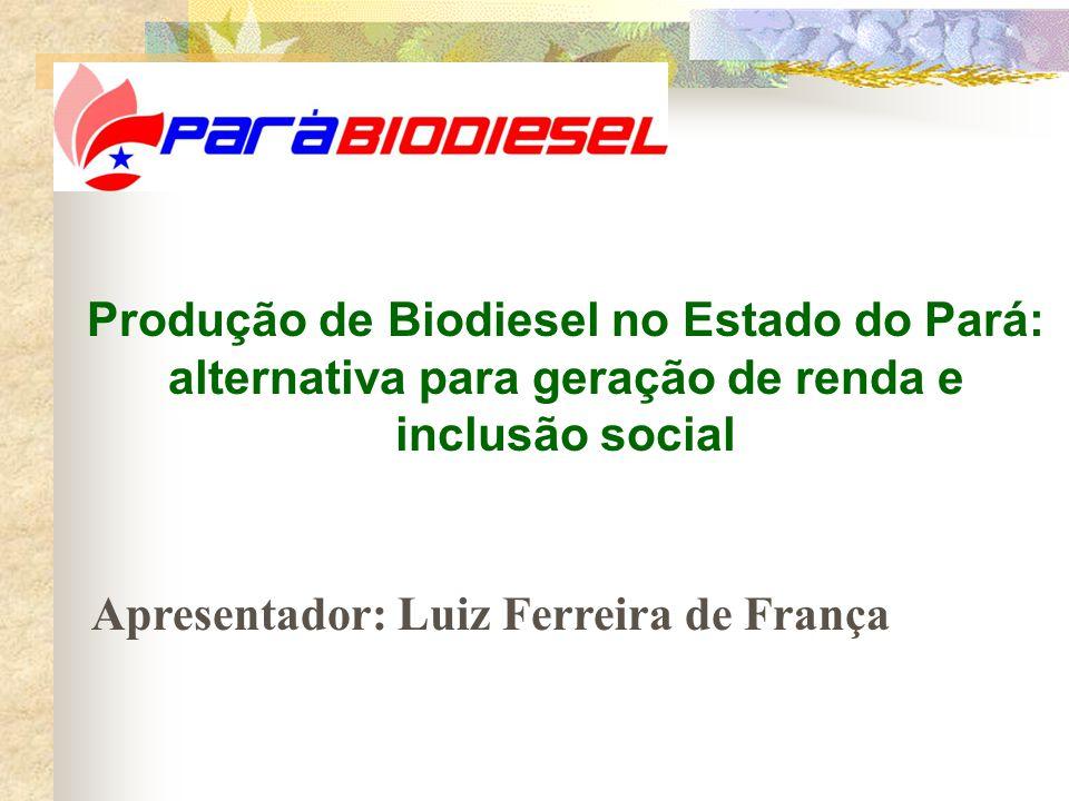 Produção de Biodiesel no Estado do Pará: alternativa para geração de renda e inclusão social Apresentador: Luiz Ferreira de França