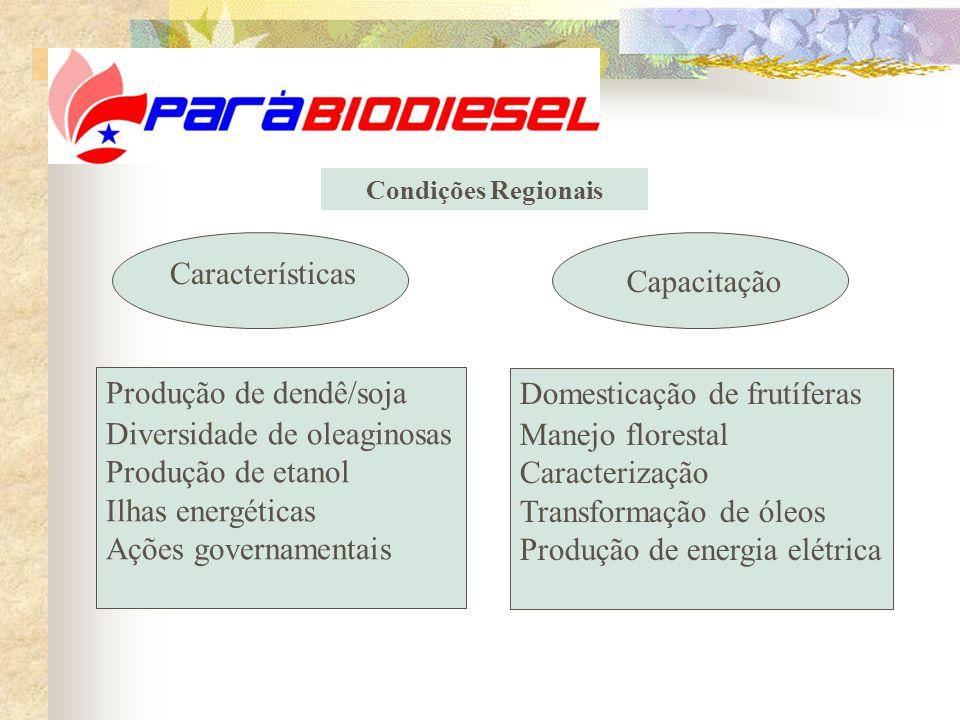 Condições Regionais Características Capacitação Produção de dendê/soja Diversidade de oleaginosas Produção de etanol Ilhas energéticas Ações governamentais Domesticação de frutíferas Manejo florestal Caracterização Transformação de óleos Produção de energia elétrica