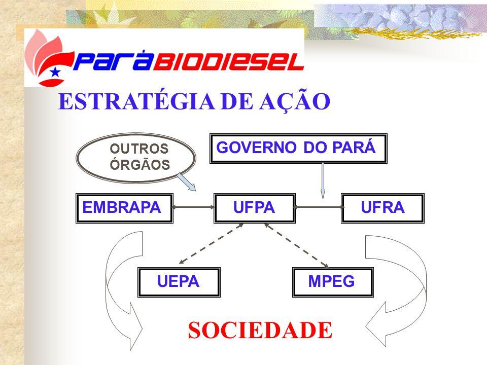 UFPA GOVERNO DO PARÁ EMBRAPA UFRA UEPA MPEG OUTROS ÓRGÃOS ESTRATÉGIA DE AÇÃO SOCIEDADE