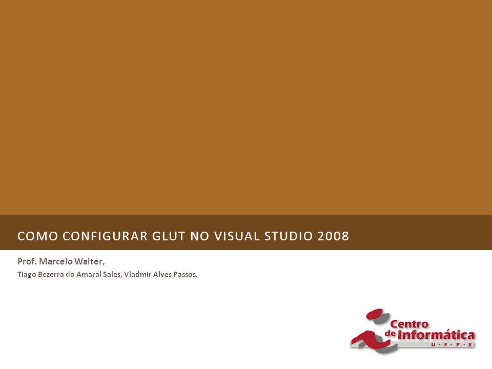 COMO CONFIGURAR GLUT NO VISUAL STUDIO 2008 Prof.