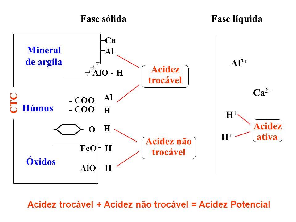 Fase sólidaFase líquida Ca Al Mineral de argila AlO - H Húmus O Al H - COO Óxidos FeO AlO HHHH CTC Acidez trocável Acidez não trocável Al 3+ Ca 2+ H+H