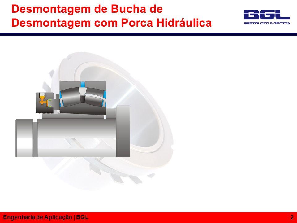 Informações Técnicas Engenharia de Aplicação | BGL 2 Desmontagem de Bucha de Desmontagem com Porca Hidráulica