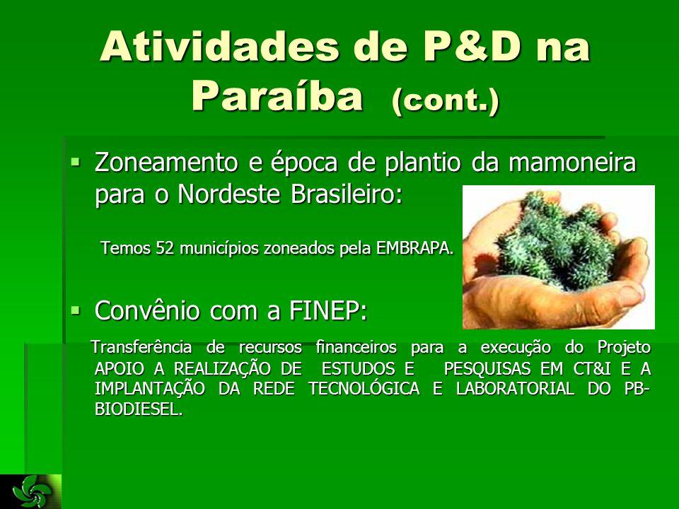 Atividades de P&D na Paraíba (cont.)  Zoneamento e época de plantio da mamoneira para o Nordeste Brasileiro: Temos 52 municípios zoneados pela EMBRAPA.