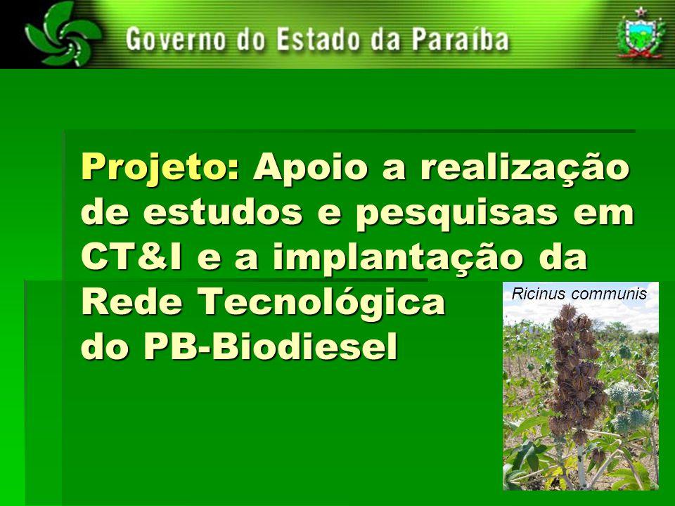 Projeto: Apoio a realização de estudos e pesquisas em CT&I e a implantação da Rede Tecnológica do PB-Biodiesel Ricinus communis