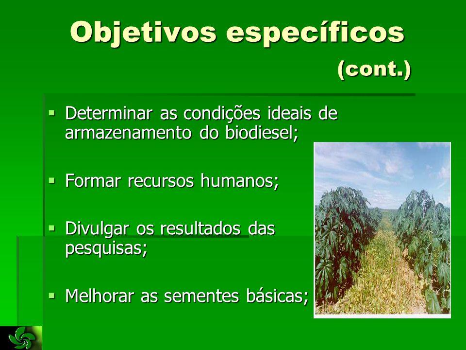 Objetivos específicos (cont.)  Determinar as condições ideais de armazenamento do biodiesel;  Formar recursos humanos;  Divulgar os resultados das pesquisas;  Melhorar as sementes básicas;