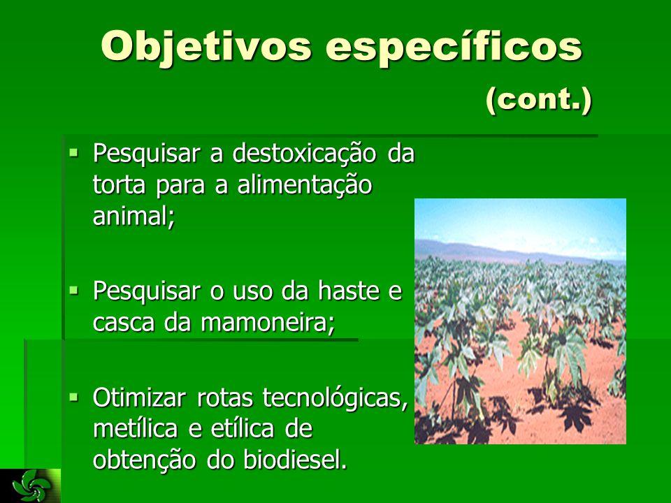 Resultados esperados  Identificação de rotas tecnológicas de obtenção de biodiesel;  Melhor mistura em termos de eficiência energética;  Estabilidade térmica e oxidativa do biodiessel;  Cinética da degradação térmica do biodiesel;