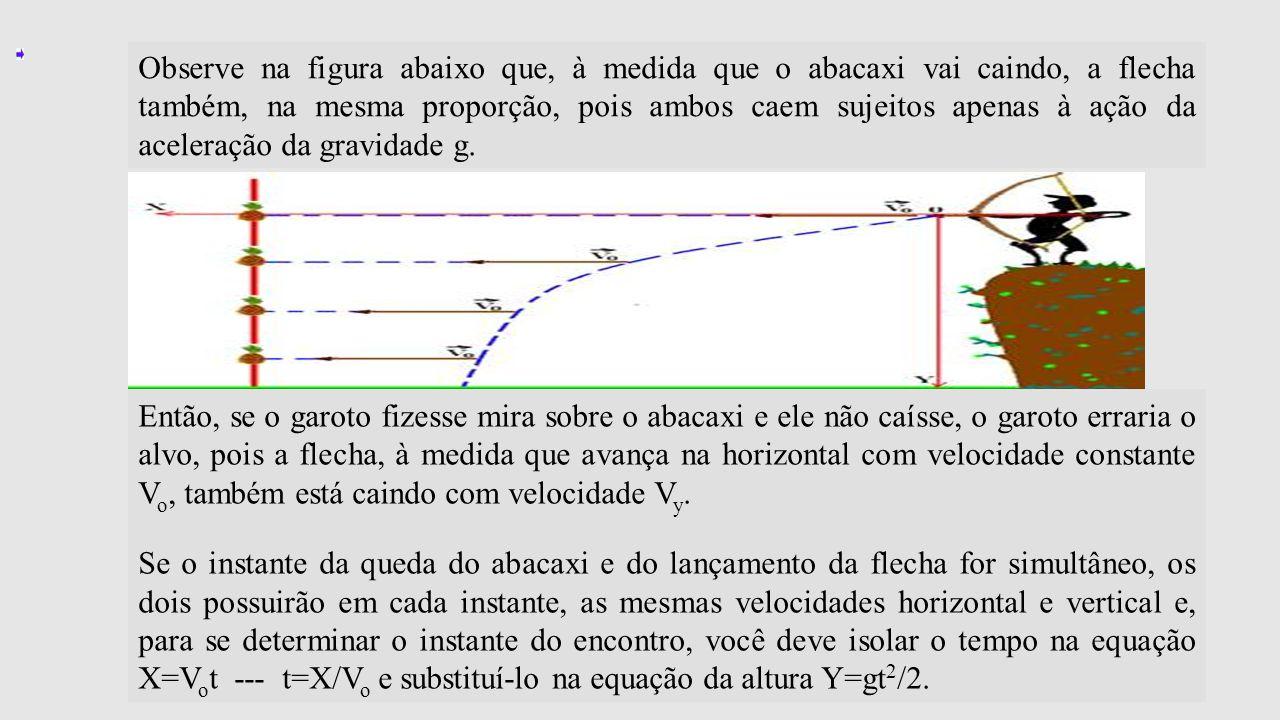 Observe na figura abaixo que, à medida que o abacaxi vai caindo, a flecha também, na mesma proporção, pois ambos caem sujeitos apenas à ação da aceler