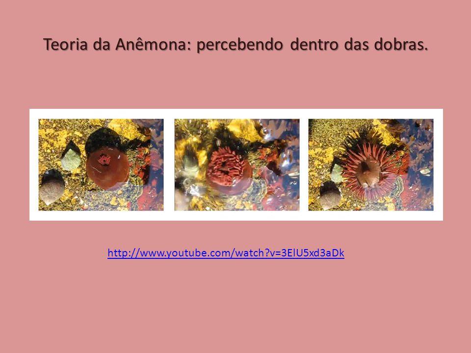 Teoria da Anêmona: percebendo dentro das dobras. http://www.youtube.com/watch v=3ElU5xd3aDk