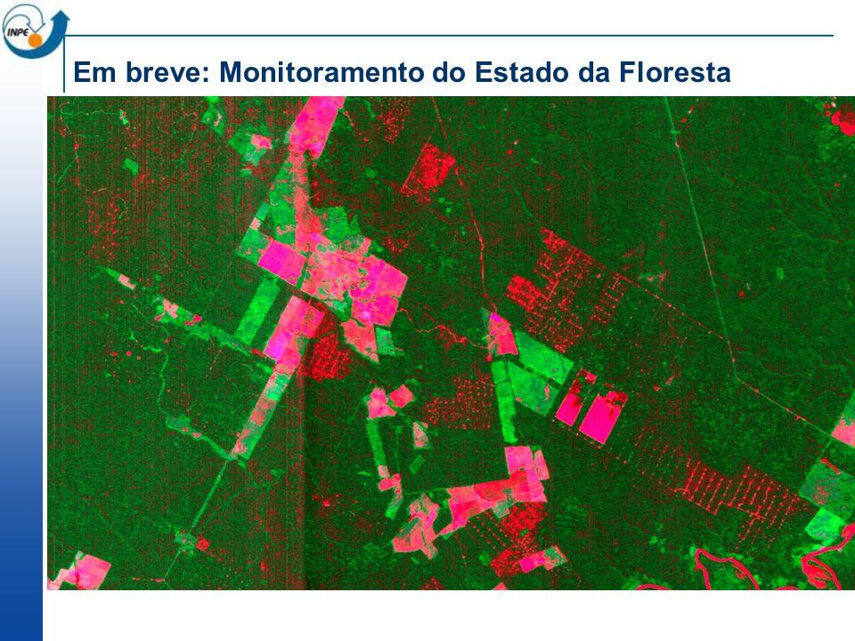 Em breve: Monitoramento do Estado da Floresta