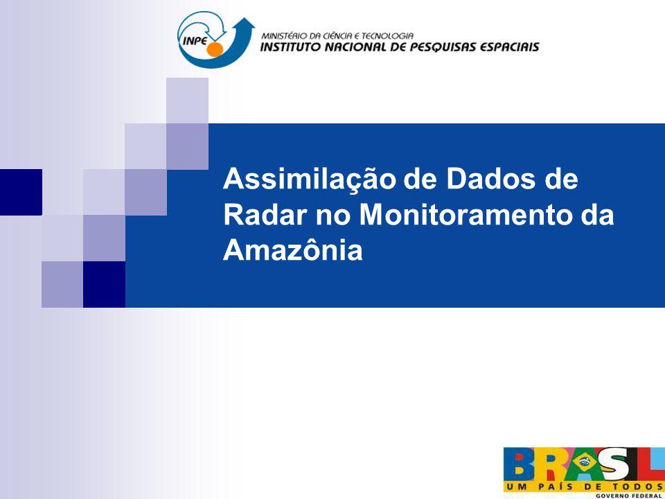 Assimilação de Dados de Radar no Monitoramento da Amazônia