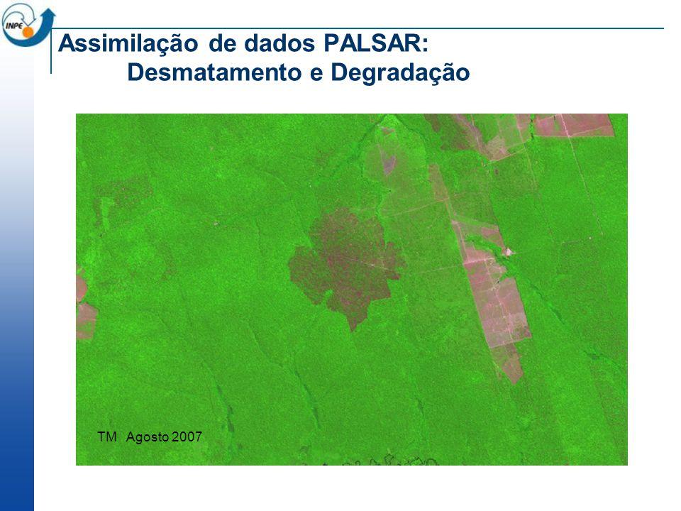 Assimilação de dados PALSAR: Desmatamento e Degradação TM Agosto 2007