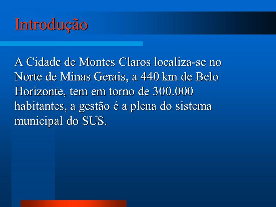 Introdução A Cidade de Montes Claros localiza-se no Norte de Minas Gerais, a 440 km de Belo Horizonte, tem em torno de 300.000 habitantes, a gestão é