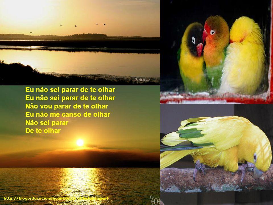É isso aí Há quem acredita em milagres http://blog.educacional.com.br/profdiafonsoport