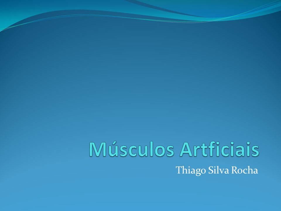 Thiago Silva Rocha