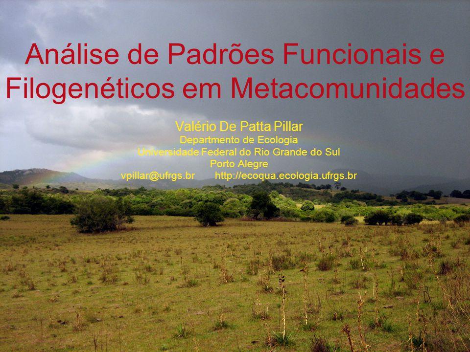 Filtro e gradiente ecológico Comunidade A Comunidade B Comunidade C Filogenia Influência da filogenia Metacomunidade