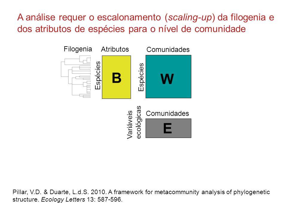 Comunidades W Espécies E Variáveis ecológicas Comunidades Atributos B Espécies Filogenia Pillar, V.D.