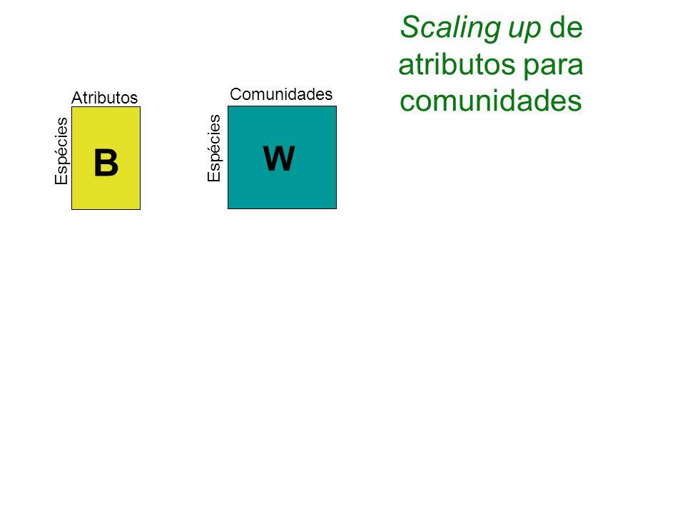 Espécies Comunidades B W Espécies Atributos Scaling up de atributos para comunidades