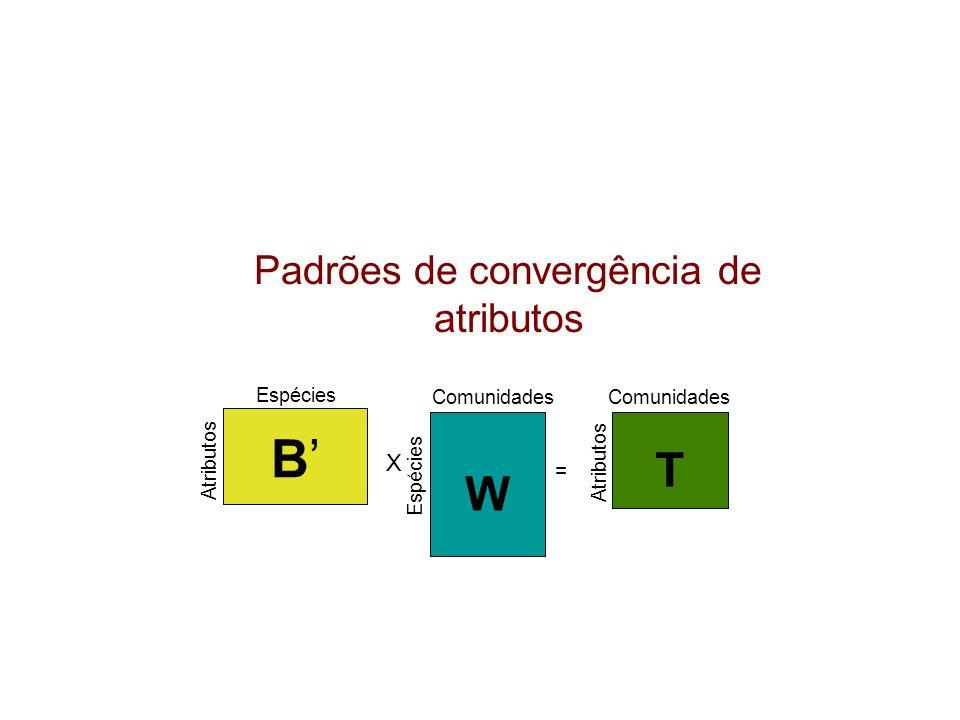 B'B' Atributos Espécies Atributos Comunidades T W X Espécies = Padrões de convergência de atributos