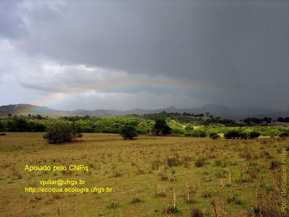 Foto de Gabriel Pillar vpillar@ufrgs.br http://ecoqua.ecologia.ufrgs.br Apoiado pelo CNPq