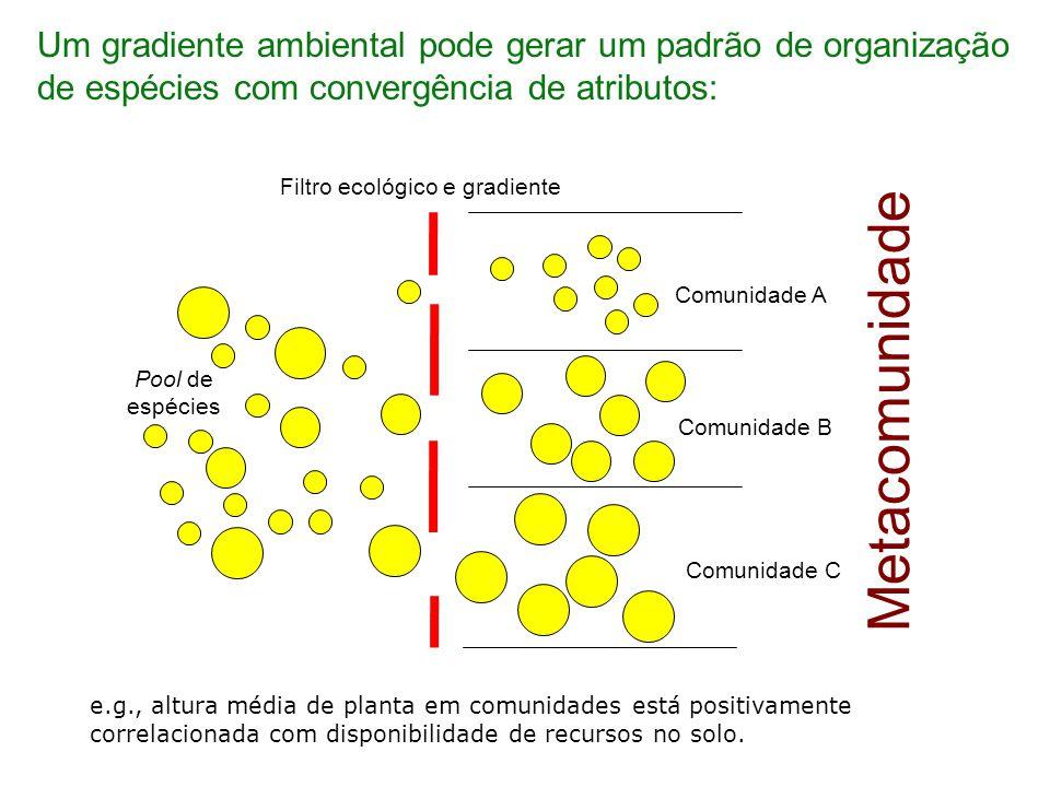 Interações que controlam como espécies se associam podem gerar um padrão de organização com divergência de atributos: Um gradiente ecológico pode produzir um padrão de composição de espécies com diferentes combinações de atributos.
