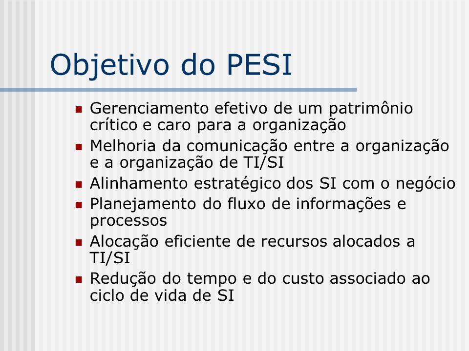 Objetivo do PESI Gerenciamento efetivo de um patrimônio crítico e caro para a organização Melhoria da comunicação entre a organização e a organização