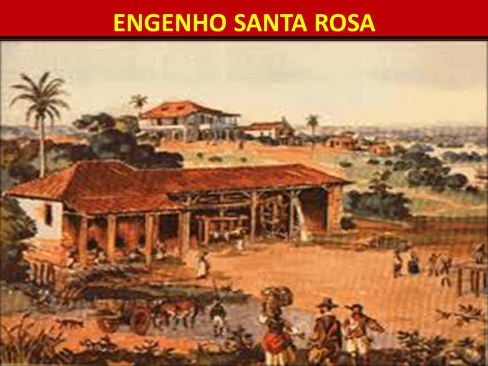 ENGENHO SANTA ROSA 10