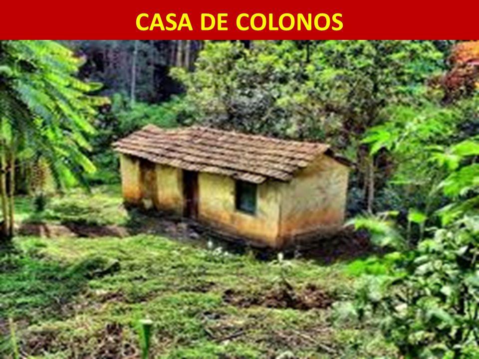 CASA DE COLONOS 11