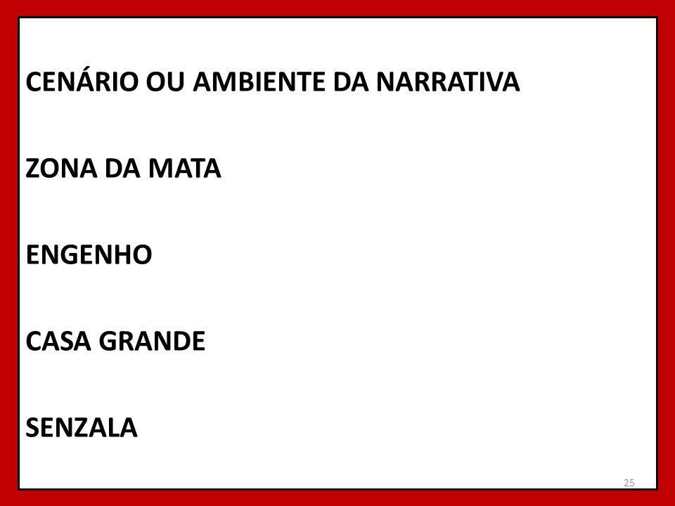 CENÁRIO OU AMBIENTE DA NARRATIVA ZONA DA MATA ENGENHO CASA GRANDE SENZALA 25