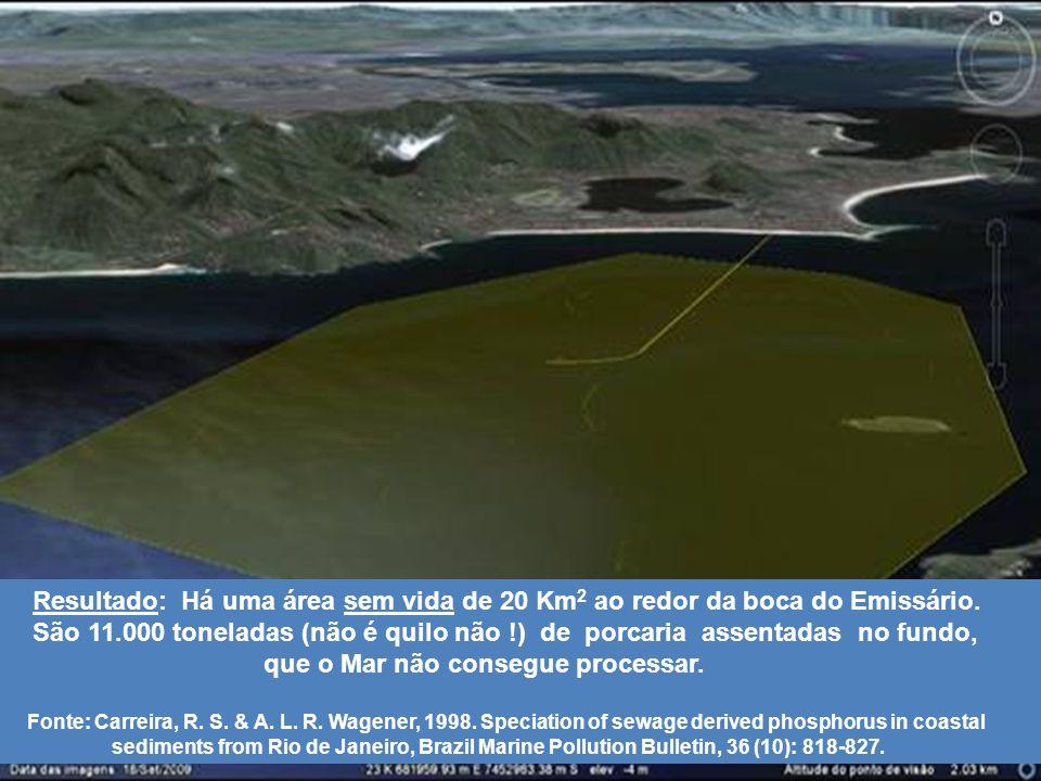 16 Resultado: Há uma área sem vida de 20 Km 2 ao redor da boca do Emissário.